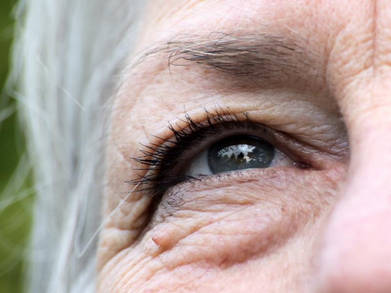 Economics of Aging
